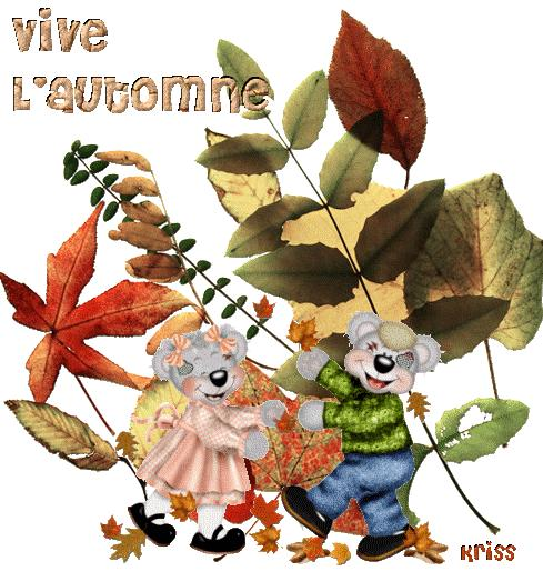 L'automne dans tous ses états