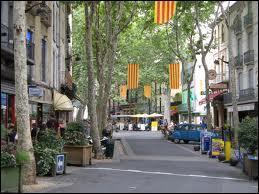 Nous reprenons la route et nous partons à Céret. Cette ville Catalane se situe en région ...