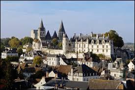 Nous partons à la découverte de la ville de Loches. Cité médiévale Tourangelle, elle se situe en région ...