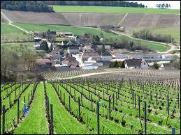 Nous traversons les vignes et nous arrivons à la commune Auboise de Noë-les-Mallets. Nous sommes en région ...
