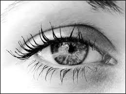Qu'est-ce qui est visible à l'œil nu ?