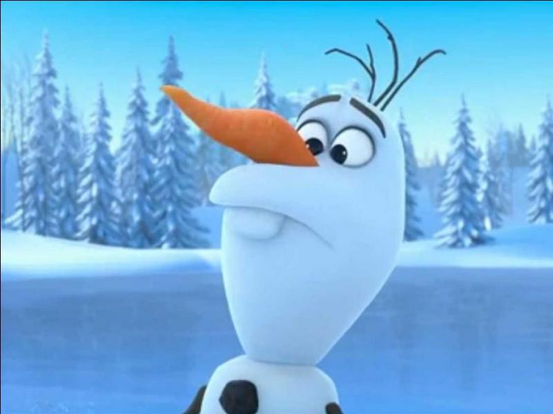 Quizz la reine des neiges les personnages quiz dessins for Le jardin qui bouge