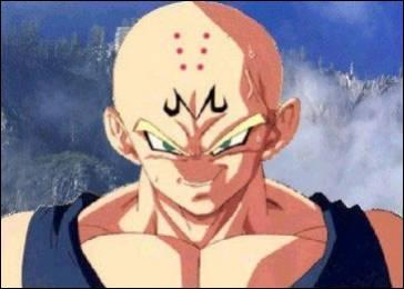 Ce personnage fait son malin, mais il n'a pas de nez ! Vous comprenez donc que Krilin fait partie de la fusion, mais qui est l'autre ?