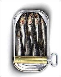 """Et qui ne parle pas de """"sardines"""" dans ses chansons ?"""