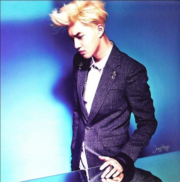 Comment s'appelle le leader du groupe EXO ?