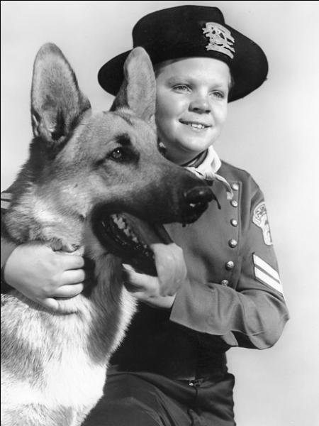 """Dans la célèbre série des années 50 """"Rintintin"""", de quelle race est le chien, héros de la série ?"""