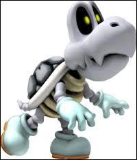 C'est un squelette de Koopa, un Skelerex, il existe des Paraskelerexs.