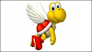Son ami sans ailes se nomme Koopa, logiquement, c'est un Parakoopa.