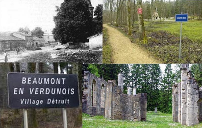 La commune de Beaumont partage avec 5 autres une particularité unique dans l'histoire des communes françaises. Cette particularité date de 100 ans, environ. Quelle est cette particularité ?
