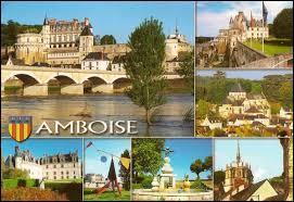 Nous commençons cette nouvelle promenade par une visite d'Amboise. Ville connue pour son château, elle se situe dans le département ...