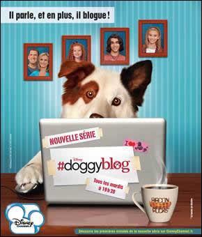 Qui est le ou la plus jeune dans Doggyblog ?