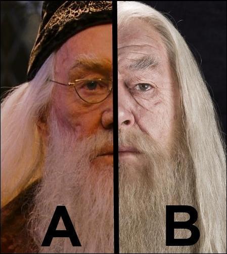 Coupé en deux ! Quelle partie de ce Dumbledore a joué aux côtés de Kenneth Branagh ?