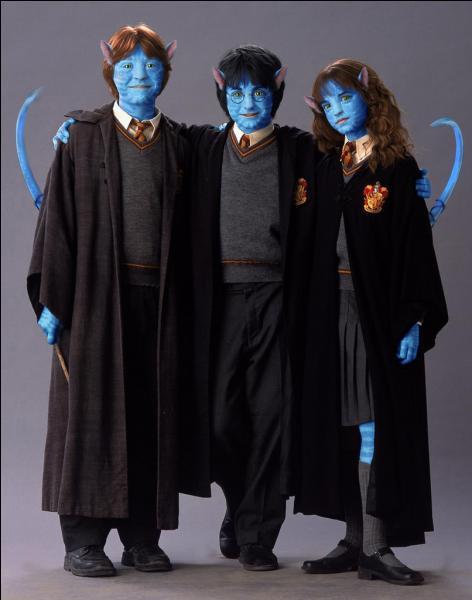 Revenons aux sorciers ; comment Harry, Ron et Hermione ont-ils pu se transformer ainsi ? Magiquement, y a-t-il une solution pour devenir comme cela ?