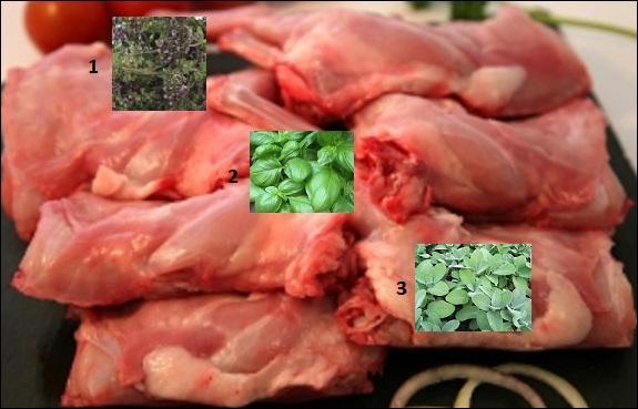 Associations de saveurs. Avec quels aromates parfumerez-vous, au choix, les râbles de lapin ?