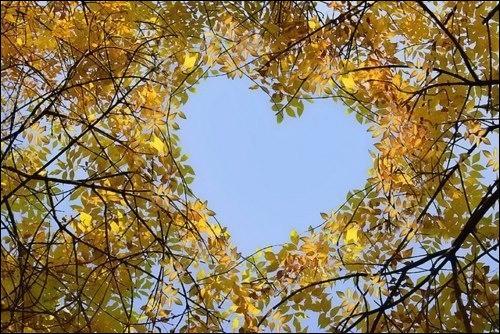 Quel chanteur avait le coeur à l'automne ?