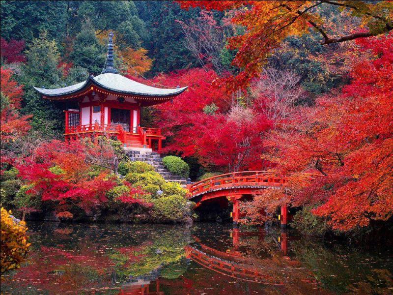 """Qui a écrit """"L'automne à Pékin"""" ?"""