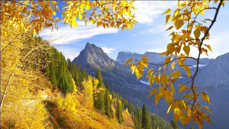 Si on parlait de l'automne ?