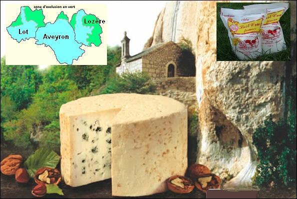 Quel est ce fromage blanc ivoire, à pâte persillée, fait avec du lait ---------- ?