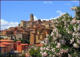 """Quelle ville du Sud de la France est surnommée """"la capitale du parfum"""" ?"""