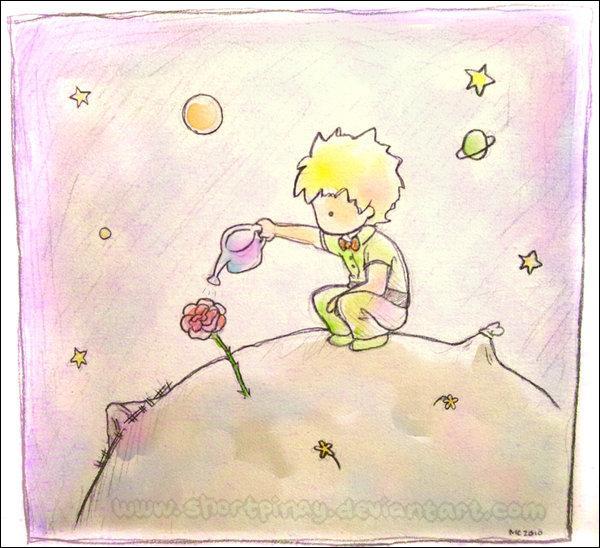 Quelle est la fleur qui appartient au Petit Prince ?