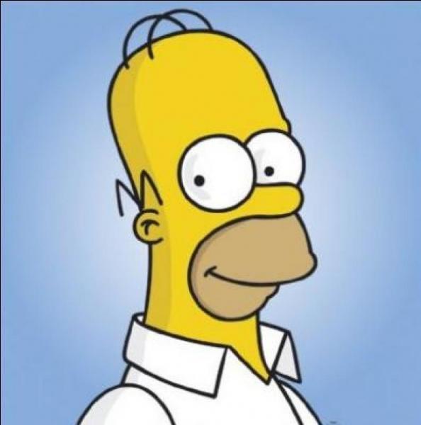 Cochez la/les bonne(s) réponse(s) concernant Homer Simpson.