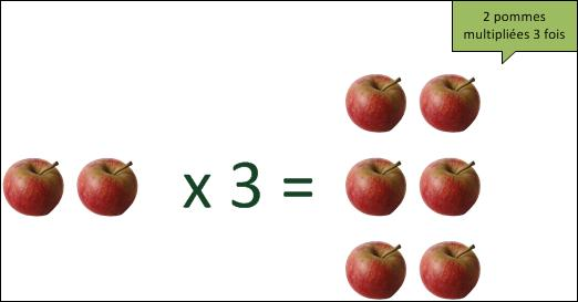 Si tu multiplies ces pommes, quel est ton résultat ?