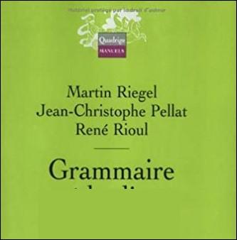 Comment est la grammaire de Martin Riegel ?