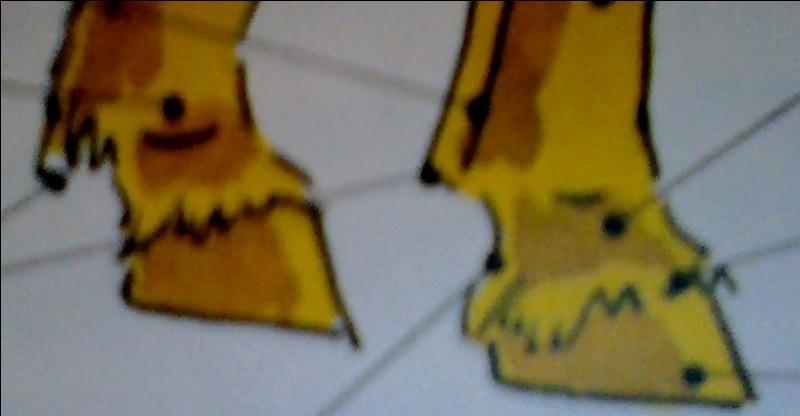 Comment se nomme le creux qu'on peut observer juste avant le sabot ? Aide-toi de la photo.