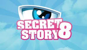 Le grand questionnaire de Secret Story 8