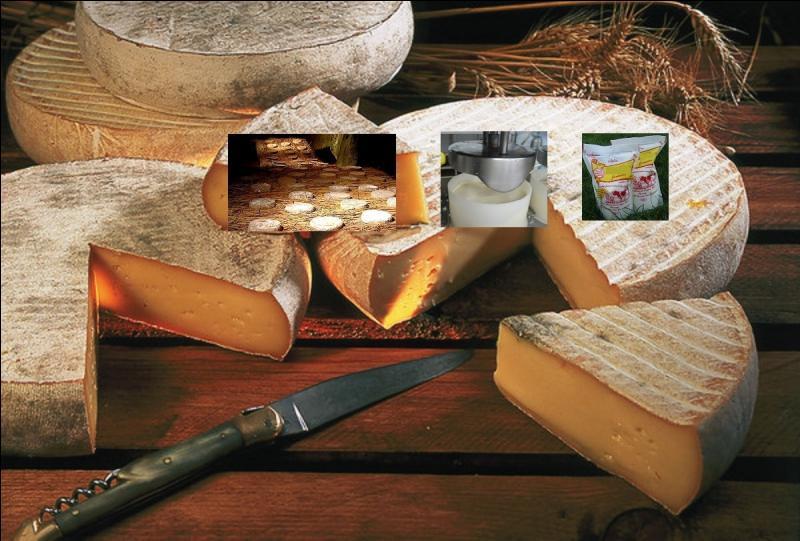 Quel type de fromage est le saint-nectaire fermier ?