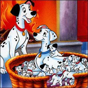 Ce chien dont la -------- est fort noble a retrouvé sa popularité après la ------ ------- au ------ remporté par le dessin animé « Les 101 Dalmatiens ».