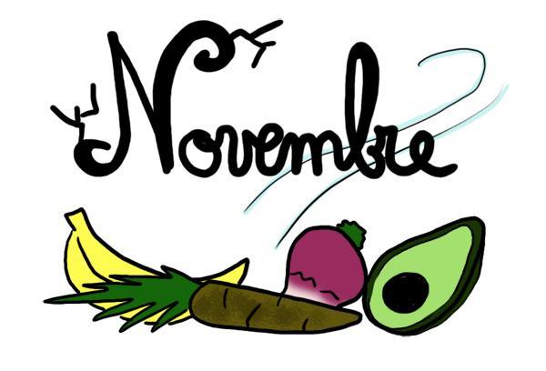 Bonjour novembre !
