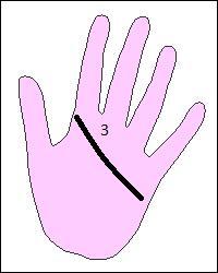 En chiromancie comment appelle-t-on cette ligne de la main ?