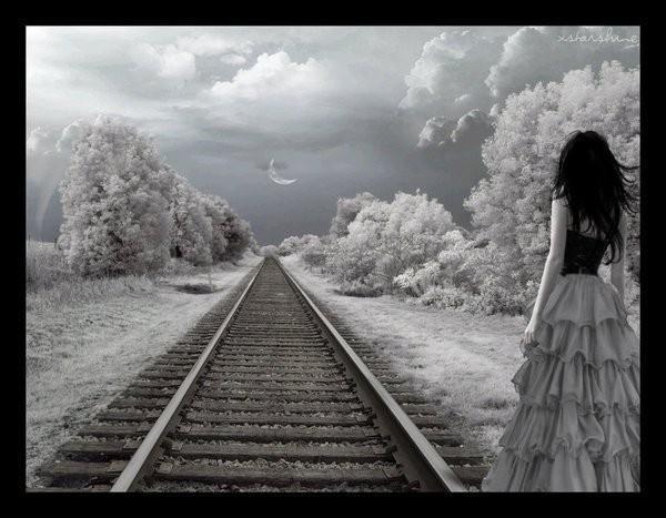 """Qui chantait """" Et toutes tes larmes ne pourront pas me rendre la confiance que j'avais pour toi, je ne peux plus t'aimer ..."""" ?"""
