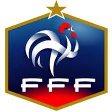 Les joueurs de foot de l'équipe de France