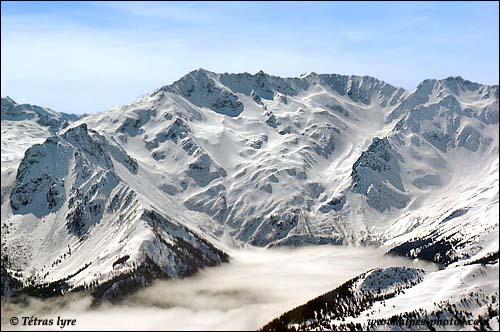 En Isère, dans quel massif se situe le Pic de la Belle étoile qui culmine à 2718 m ?