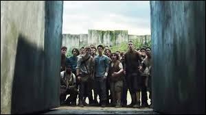 Avec qui Thomas est-il la première fois qu'il est dans le labyrinthe ?