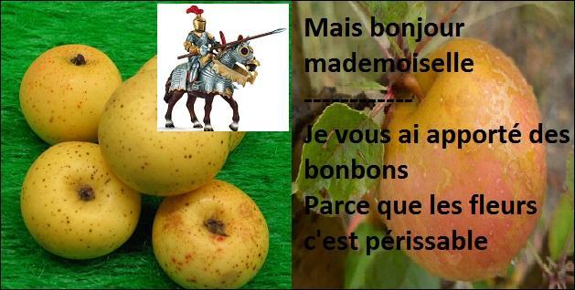 Quel point commun ces pommes ont-elles ?
