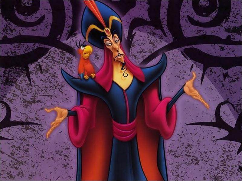 Comment s'appelle ce sorcier qui veut épouser Jasmine pour être sultan ?