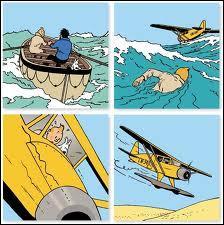 """Dans l'album """"Le Crabe aux pinces d'or"""", Tintin s'empare d'un hydravion puis s'écrase en plein Sahara. Dans quel pays va-t-il errer dans le désert en compagnie du capitaine Haddock ?"""