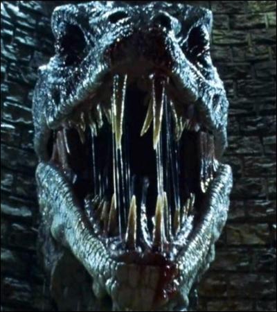 TOP 5 : La Chambre des Secrets (HP2).Dans quelle partie du Basilic Harry enfonce-t-il l'épée de Gryffondor ?