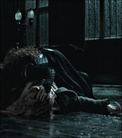 TOP 3 : L'interrogatoire d'Hermione (HP 7.1).Pourquoi Bellatrix torture-t-elle Hermione sur le parquet du salon des Malefoy ?