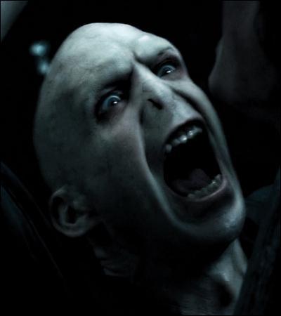 TOP 2 : Le cimetière de Little Hangleton (HP4).Pourquoi Voldemort peut-il désormais toucher le corps d'Harry ?