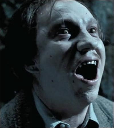 TOP 12 : La transformation de Remus Lupin (HP 3).Avec sa ruse, qui empêche le loup de dévorer Harry ?