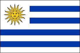 Quel pays est ici représenté par son drapeau ?