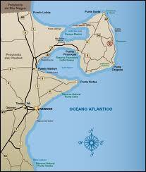 Que pourrez-vous contempler si vous visitez la péninsule Valdés, dans le nord-est de la Patagonie argentine ?