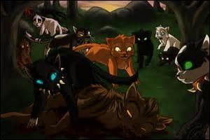 Par qui Etoile du Tigre a-t-il été tué ?