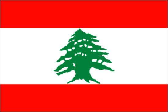Ce drapeau correspond à quel pays ?