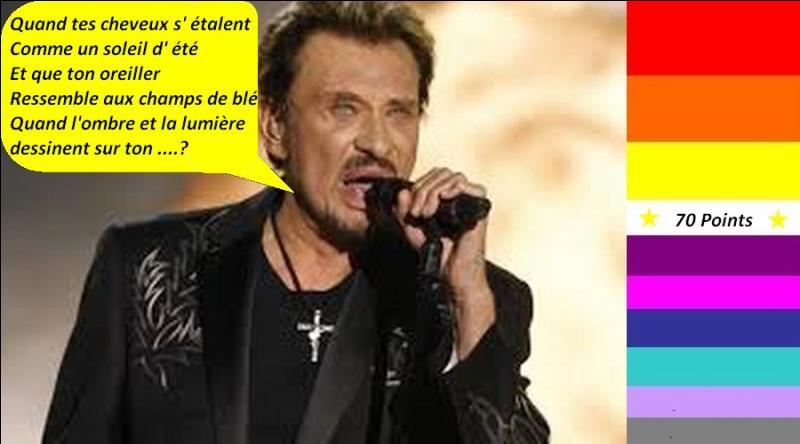 """Pour 70 points, en 1969, Johnny Hallyday nous chante """"Que je t'aime"""". Quelle est la bonne parole de la chanson ?"""