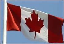 Sur l'image, c'est le drapeau du Canada.